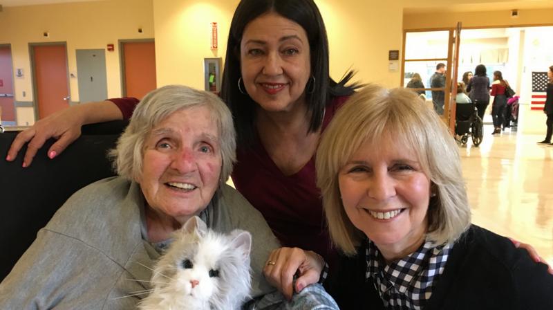 robotic pets dementia care